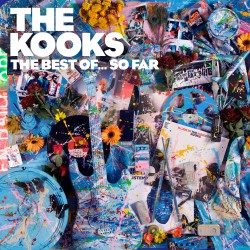 Kooks, The - The Best Of... So Far 2LP