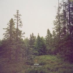 Gidge - Autumn Bells LP