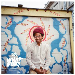 Toro Y Moi - What For? LP