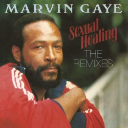 Gaye Marvin - Sexual Healing (The Remixes) 12""