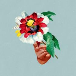 Maribou State - Kingdoms In Colour LP