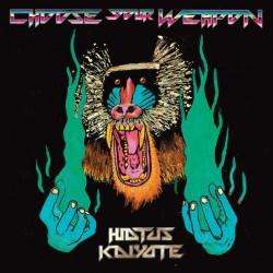 Hiatus Kaiyote - Choose Your Weapon 2LP