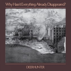 Deerhunter - Why Hasn't Everything Already Disappeared? LP (grey vinyl)