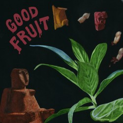 TEEN - Good Fruit LP (tangerine marbled vinyl)