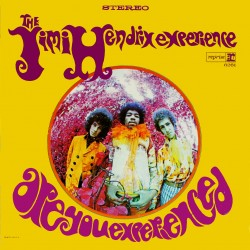 Jimi Hendrix Experience, The - Are You Experienced LP