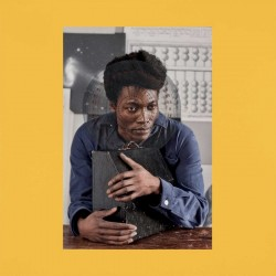Clementine Benjamin - I Tell A Fly 2LP