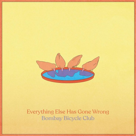 Bombay Bicycle Club - Everything Else Has Gone Wrong 2LP (deluxe edition)